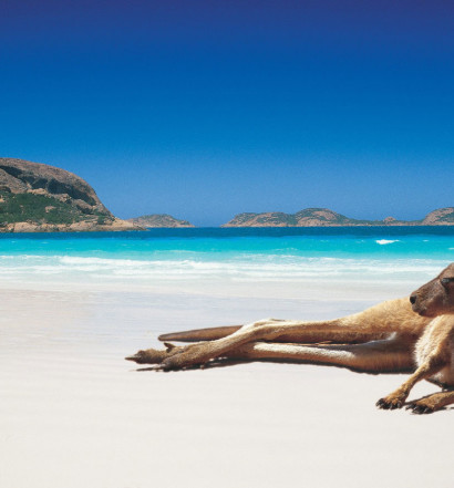 top-things-to-do-in-western-australia