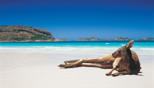 Top 9 Things To Do In Western Australia